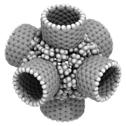 Nanorex: Open Source Molecular Modeling Software – Evoluto